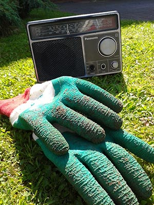 glovesradio_box